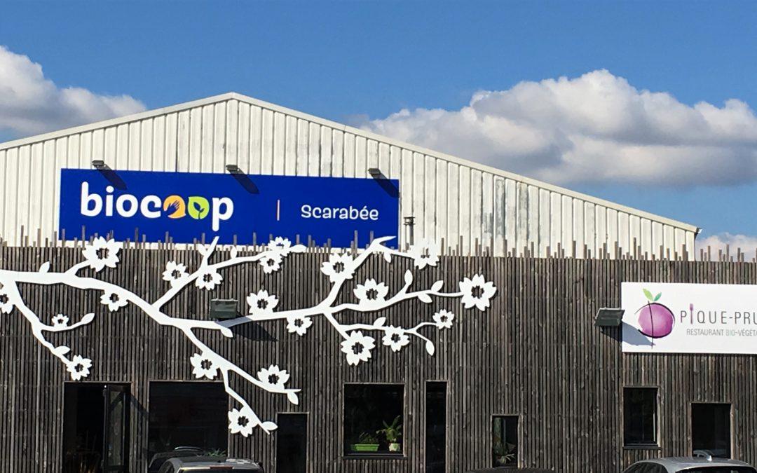 Scarabée Biocoop : Relooking